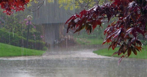 Read more about the article The Smell Of The Rain Reduces Stress And 7 Other Benefits Of Walking In The Rain