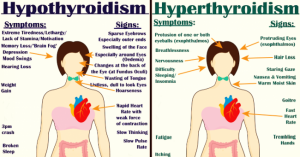 Read more about the article Everything You Need to Know About Every Thyroid Disorder: Signs, Symptoms, Causes, Treatments